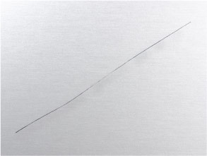 6in-Platinum-Counter-Electrode